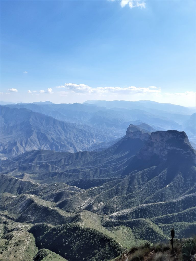 en la cima¡¡ sierra gorda de Querétaro, México.